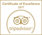 TA-Excellence-2017