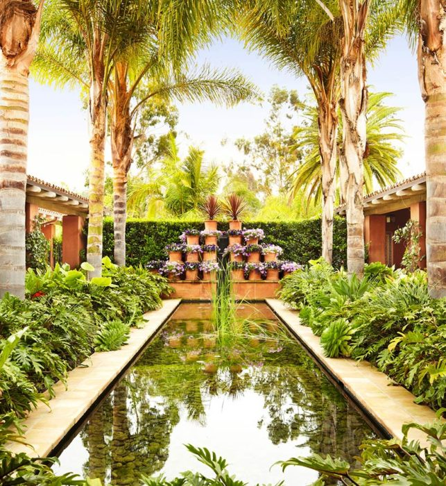 Lush garden oasis with pond and palm trees at hotel near Del Mar, CA
